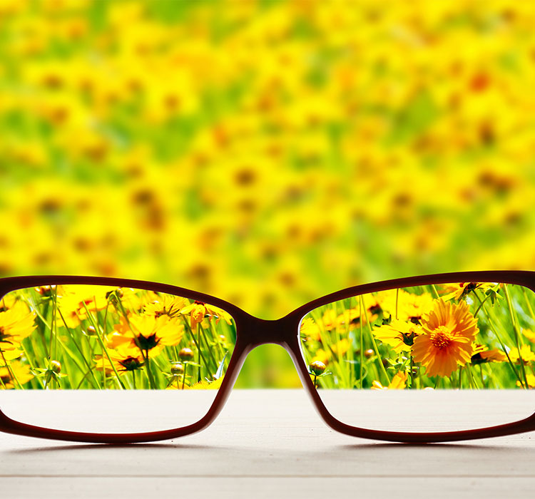 decorative banner: glasses